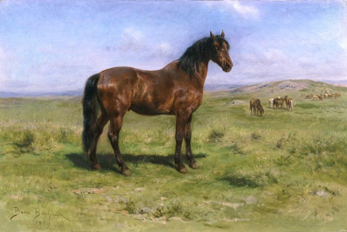 bonheur-wild-horses300